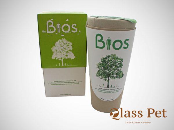 Urna Biodegradável Árvore